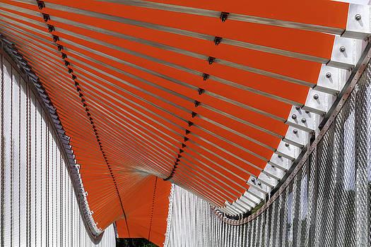 Lynn Palmer - Orange Undulations