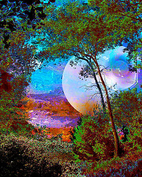 Orb by Robert St Clair