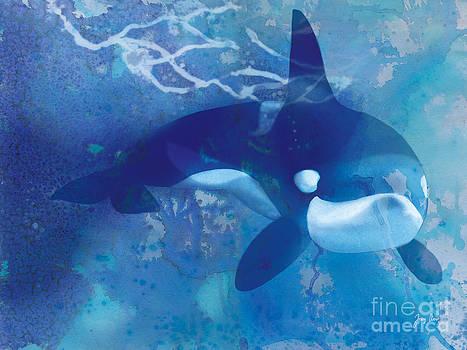 Orca by Tracy Herrmann