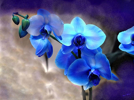 Orchid Art by Wendy McKennon