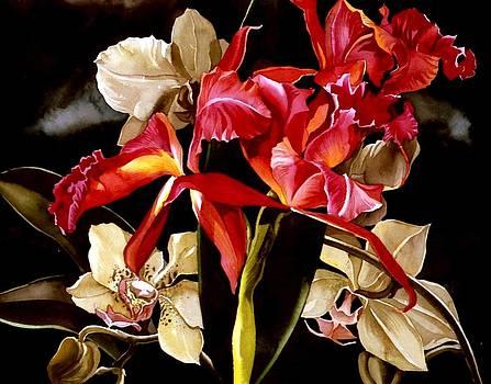 Alfred Ng - orchid fantasy