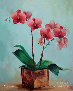 Orchid by Houman Pazouki