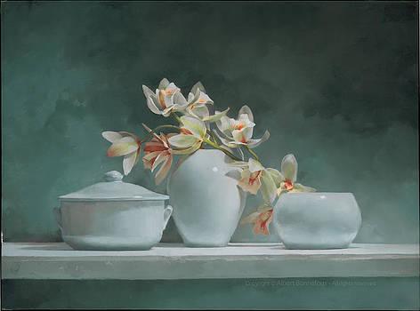 Orchidaceae by Albert Bonnefous