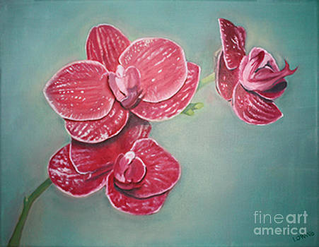 Orchids For A Friend by Lorrett A