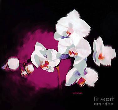 Orchids I by Tatjana Popovska