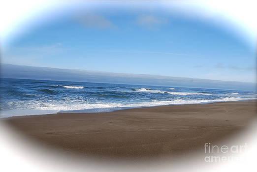 Oregon Coast by Photos by Staci Art by Douglas