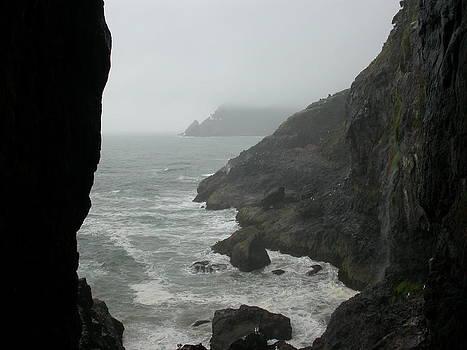 Oregon Coast by Yvette Pichette