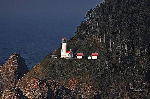 Oregon Lighthouse by Lynn Bawden