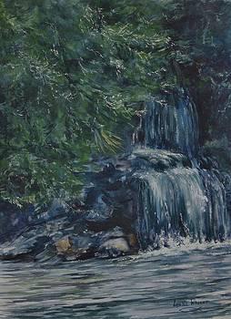 Oregon Waterfall by Lynne Wright
