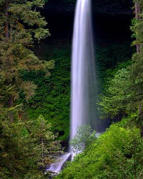 Oregon Waterfall by Teresa Moore