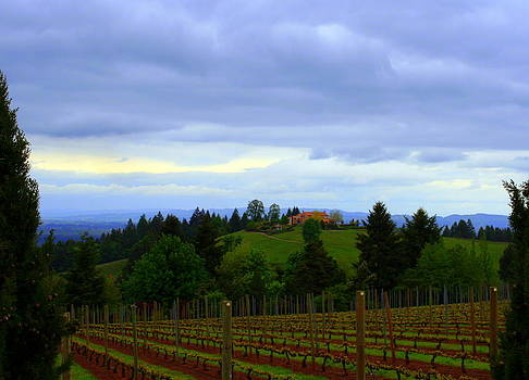 Oregon wine country by Debra Kaye McKrill