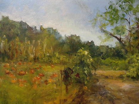 Organic Farm by Joan Sicignano