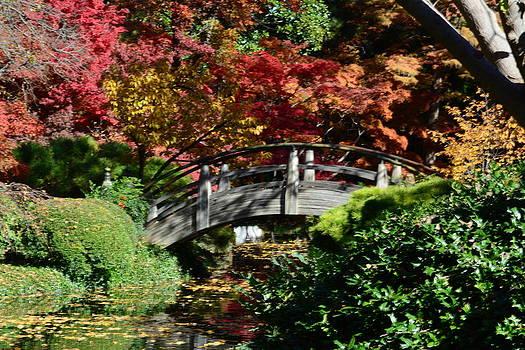 Oriental Bridge in Autumn by Jim Martin