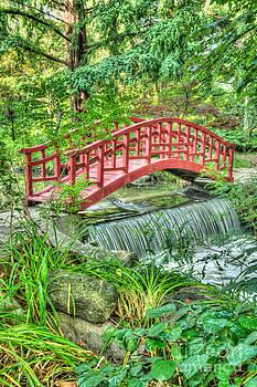 Oriental Garden by Patrick Shupert