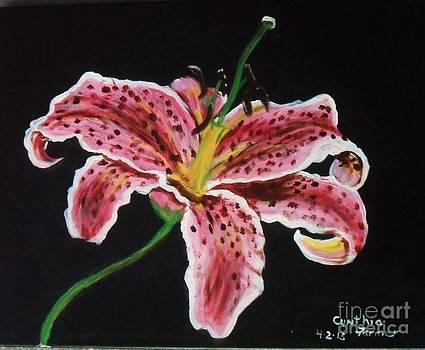 Oriental lily by Cynthia Farmer