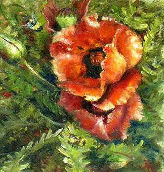 Oriental Poppies by Sharen AK Harris