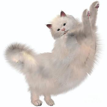 Corey Ford - Oriental White Cat