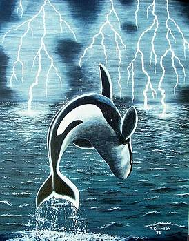 Orka     Killer Whale by Thomas F Kennedy