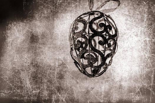 Ornamental by Elizabeth Wilson