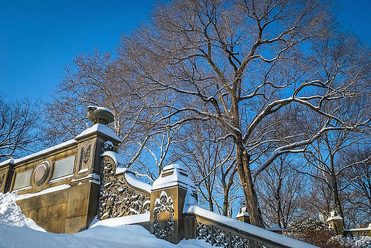 Ornate Wall and Snow by Andrew Kazmierski