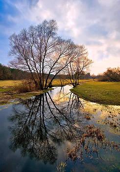 Ossow - Dluga River by Tomasz Dziubinski