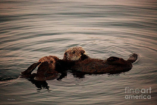 Cheryl Young - Otter Love