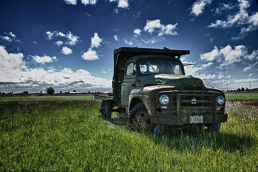 Out To Pasture by Scott Holmes
