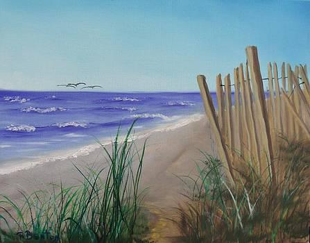 Outer Banks by Robert Benton