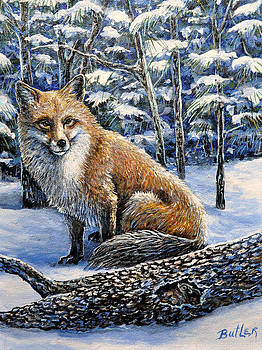 Outfoxed by Gail Butler