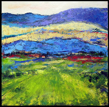 Outside Anghiari by Donna Randall