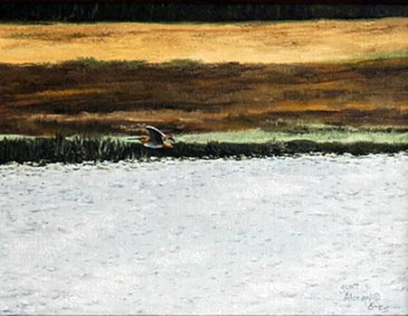 Over the Marsh by Scott Alcorn