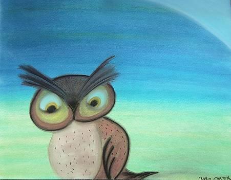 Owl 4 my son by Mario  Carter