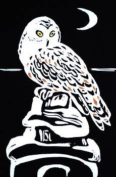 Owl And Moon by Vadim Vaskovsky