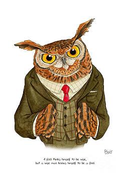 Owl by Blair Bailie