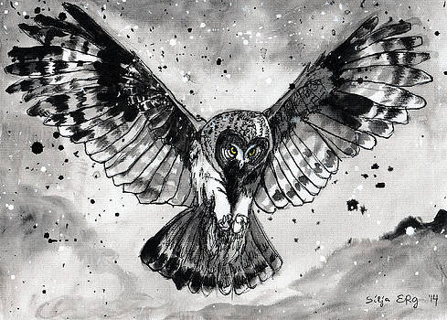 Owl in the thunderstorm by Silja Erg