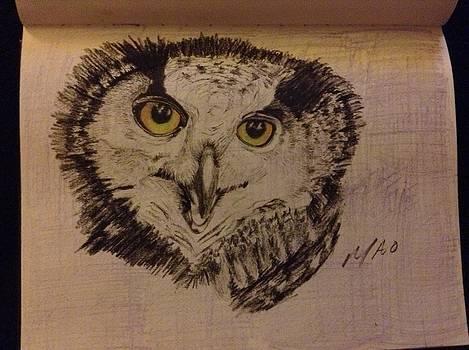 Owl by Maideline  Sanchez