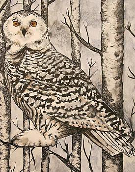 Owl by Monica Warhol