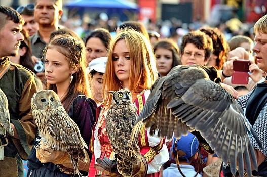 Ion vincent DAnu - Owl Tamers