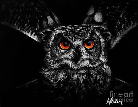 Owl by Tylir Wisdom