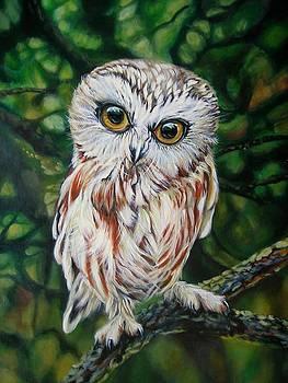 Owlet by Tanya Buryak