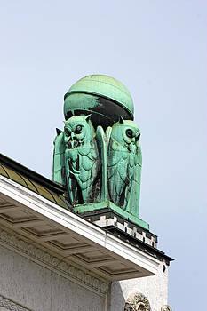 Owls symbol of wisdom by Borislav Marinic