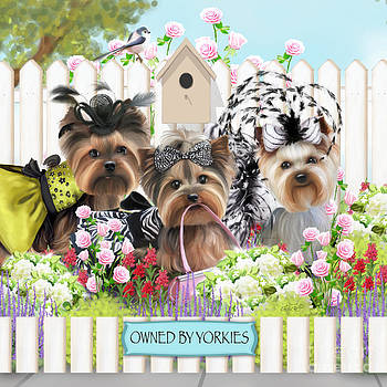 Owned By Yorkies II by Catia Cho
