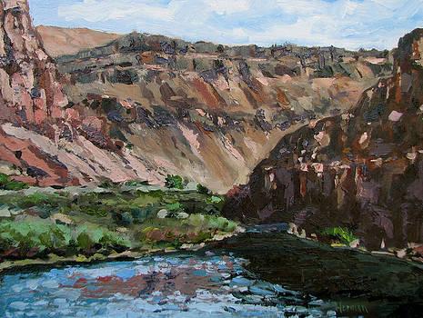 Owyhee River  by Les Herman