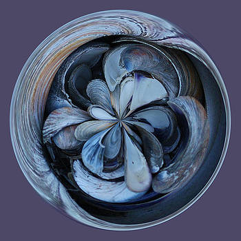 Paulette Thomas - Oyster Shell Orb