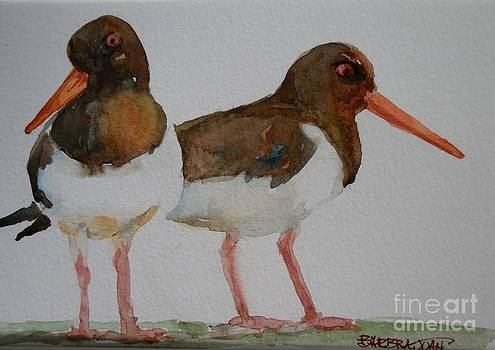 Oystercatchers by Barbra Joan