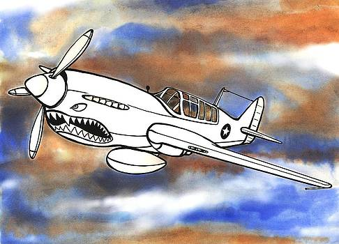 P-40 Warhawk 1 by Scott Nelson