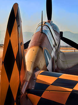 Dale Jackson - P-40 Warhawk