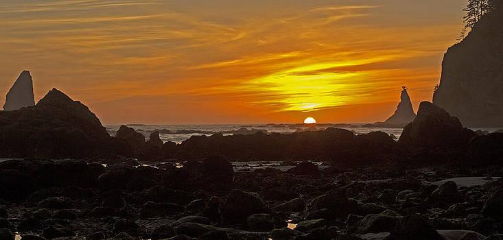 Pacific Sundown by Scott Logel