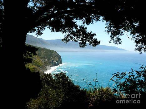 Pacific Vista by Avis  Noelle