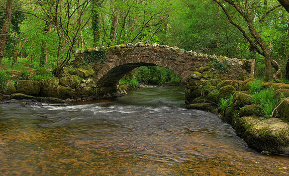 Pack horse bridge in Hisley woods by Pete Hemington